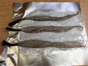 アッシュで染めている髪の毛の写真