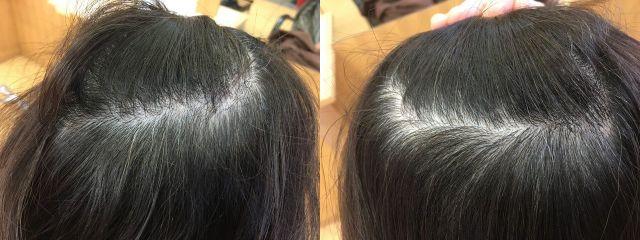 ヘナ前の髪