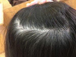 ヘナで染める前の髪の毛の写真