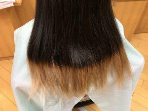 ヘアビューロンの比較に使う人の髪の毛アップ写真