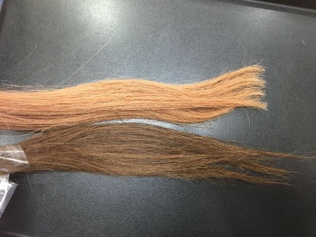 2色の毛束の写真