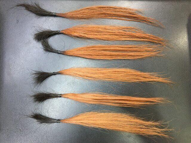 ピンクベージュで染めた髪の毛の写真