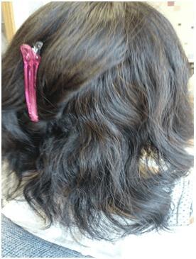 波状毛の写真