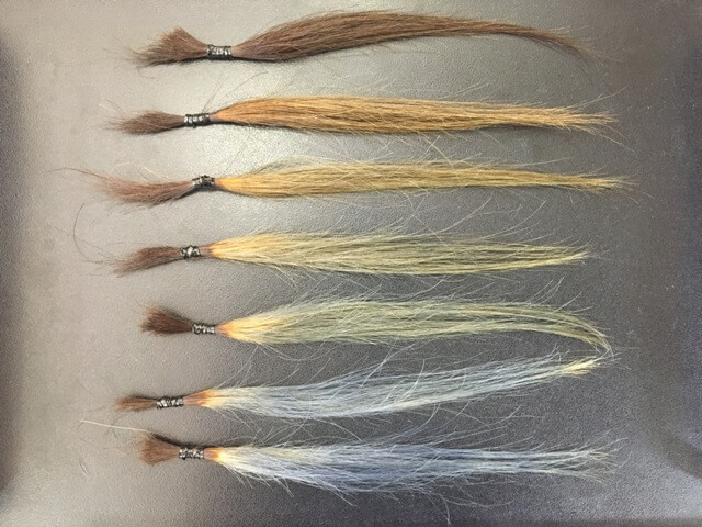 マットアッシュに染めた髪の毛の写真