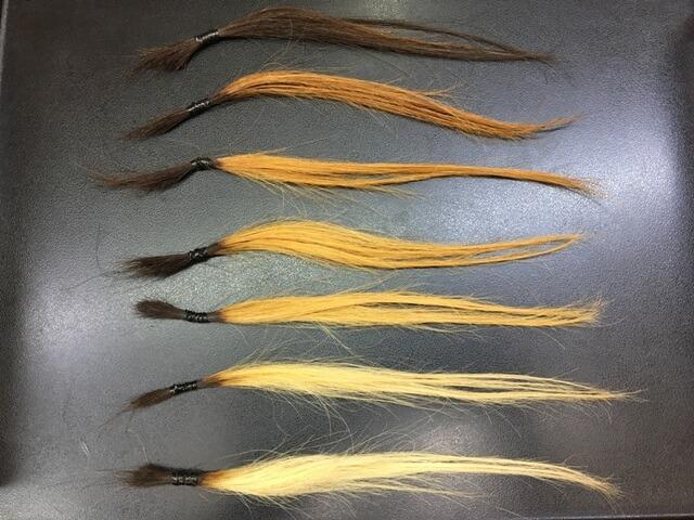 1~6回ブリーチした髪の毛とブリーチなしの毛