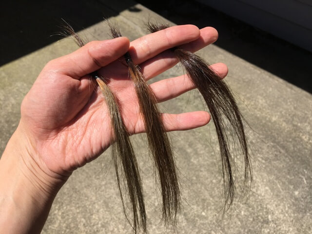 日光の下のマットアッシュの髪の毛ブリーチ1~2回とブリーチなしの写真