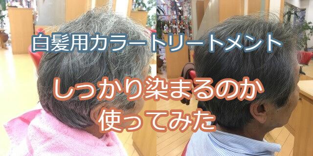 白髪用カラートリートメントの変化の写真