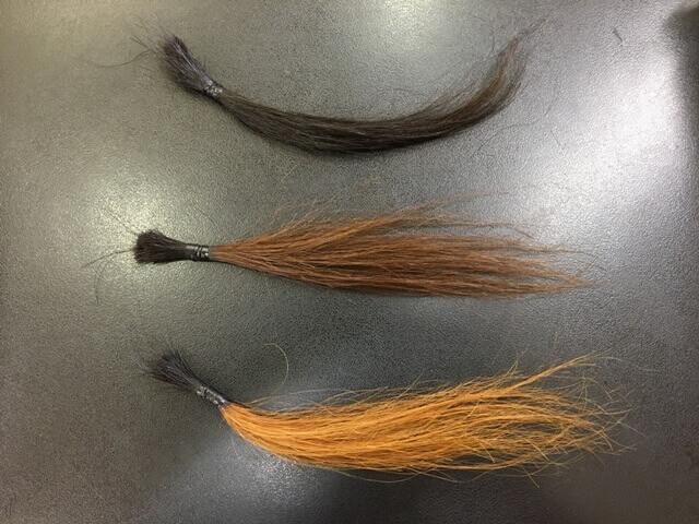 黒髪ライトナーブリーチの髪の毛の写真