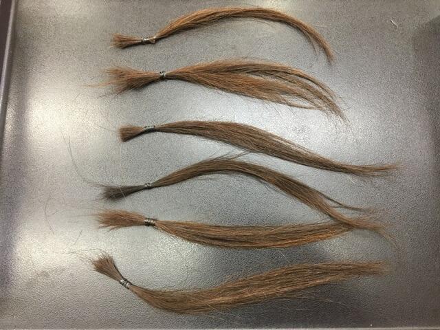 染める前の髪の毛の写真