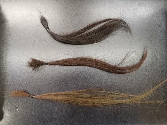 ブリーチ前の髪の毛の写真