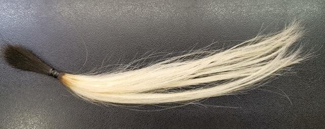 ブリーチ5回の毛