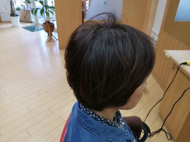 脱染前の髪の毛右