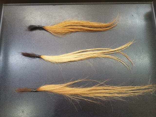 ブリーチ4回の髪の毛