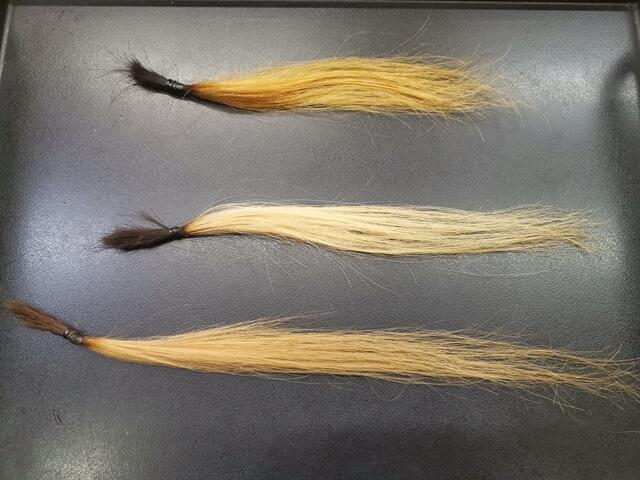 ブリーチ6回の髪の毛