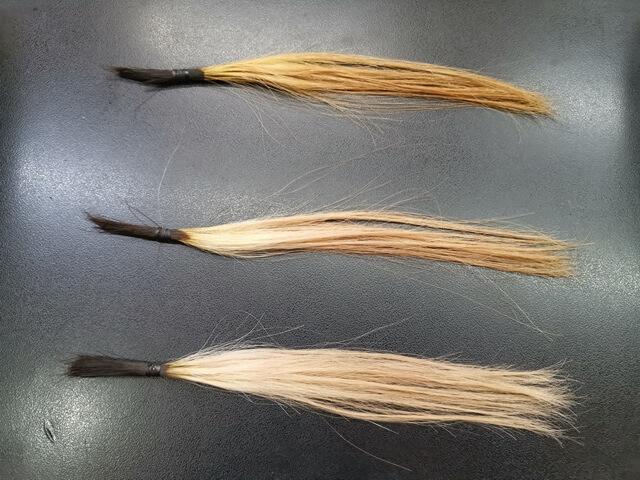 紫と灰色を混ぜて染める髪の毛
