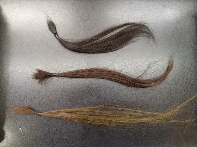 ブリーチ前の髪の毛