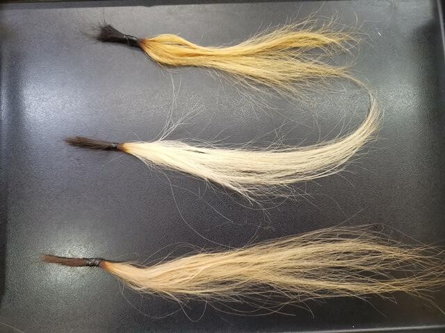 ブリーチ8回した髪の毛