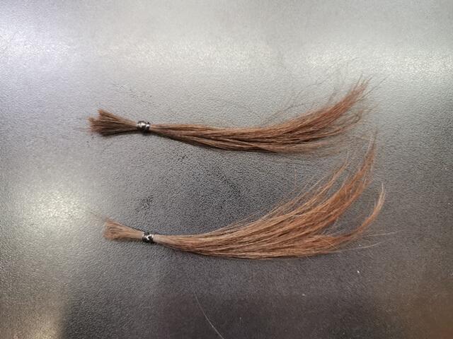 少し明るくした髪の毛の写真