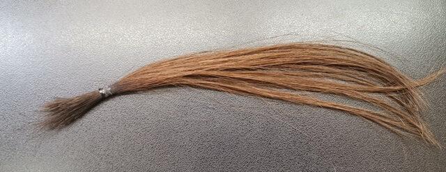 アルカリカラーで染めた茶髪