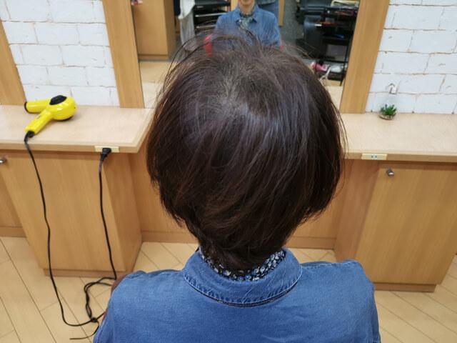 脱染前の髪の毛後ろ