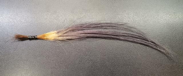 グレージュで染めた毛束黒背景
