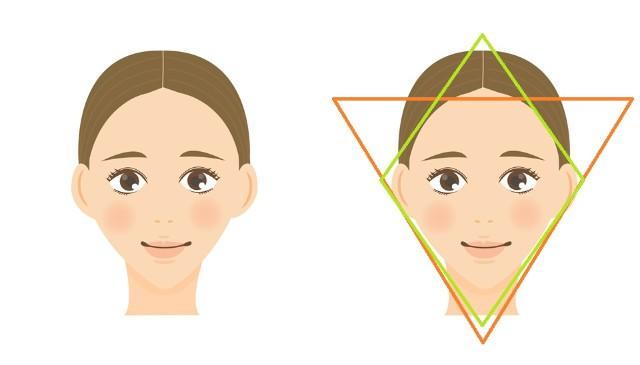 逆三角形骨格と補正ライン