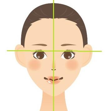 顔のパーツの位置確認イラスト