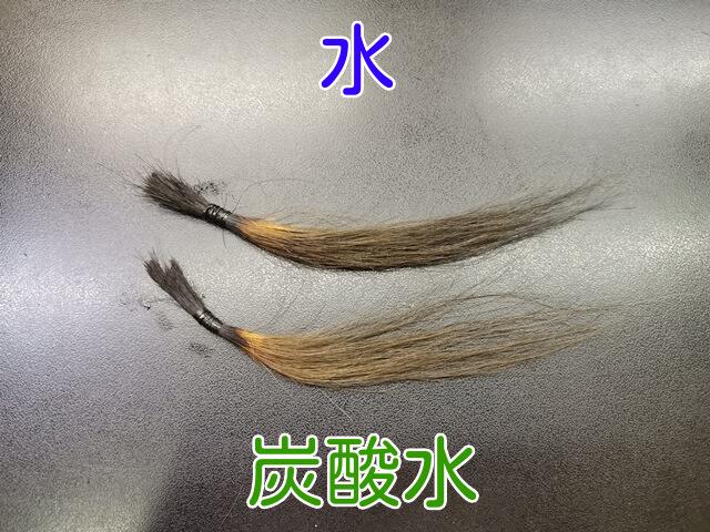 色が残った髪の毛と色落ちした髪の毛の写真