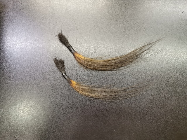 同じ色に染めた髪の毛束