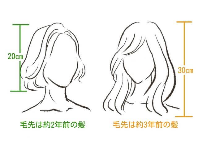 20㎝の髪と30センチの髪