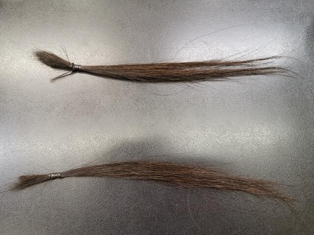 ツイストパーマとスパイラルパーマをかける前の髪