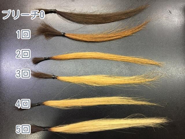ブリーチなしとブリーチ1~5回の髪