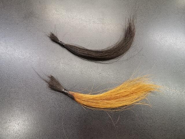 ヘアカラーで赤く染める前の髪