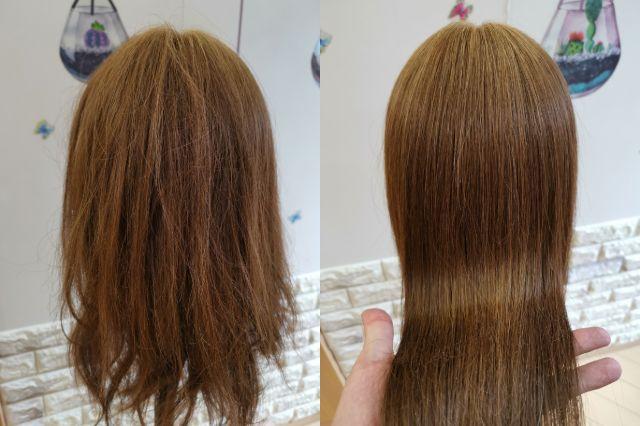 女性の縮毛矯正範囲一例
