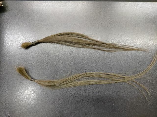 髪質改善トリートメント前の髪の毛