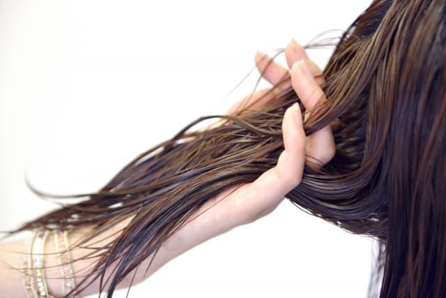 濡れた髪の毛