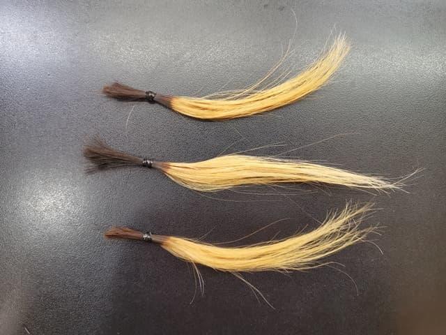 ブリーチした3つの髪