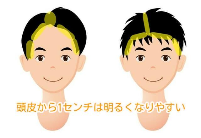 男性の髪の明るくなりやすい場所